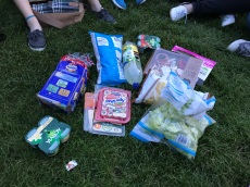 "We took the idea of ""picnic"" way too seriously lol"