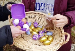 Easter Eggs and chicken eggs